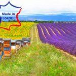 champs de lavande à miel français
