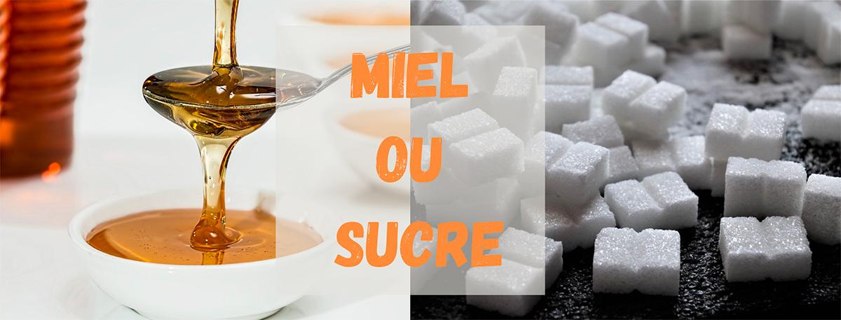 miel ou sucre sante regime